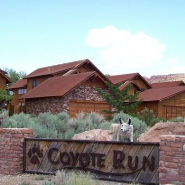 Custom Homes: Coyote Run: Casa Coyote – 15